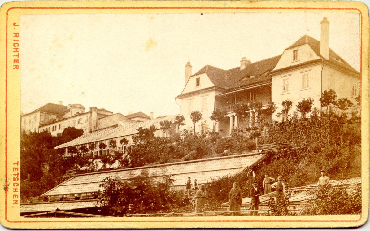 Skleníky v jižních zahradách, historická fotografie